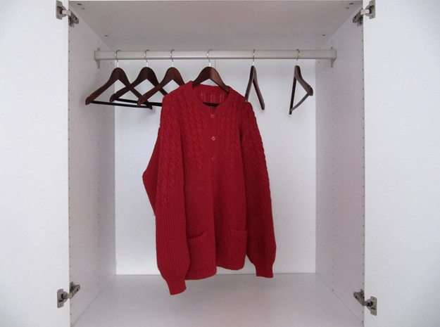 only one red cardigan hanging in an empty closet
