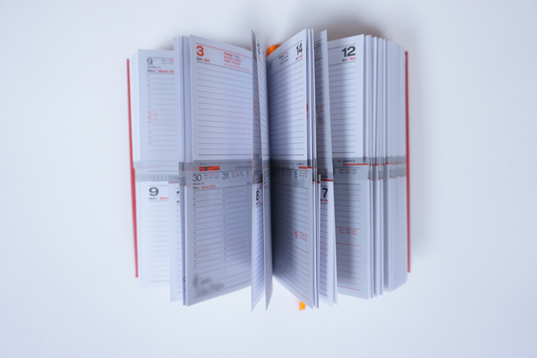 Kalender Review Lediberg Taschenkalender